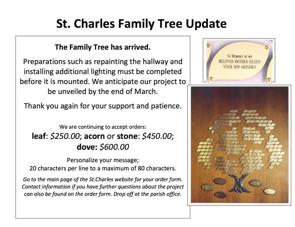 update-st-charles-tree-slide